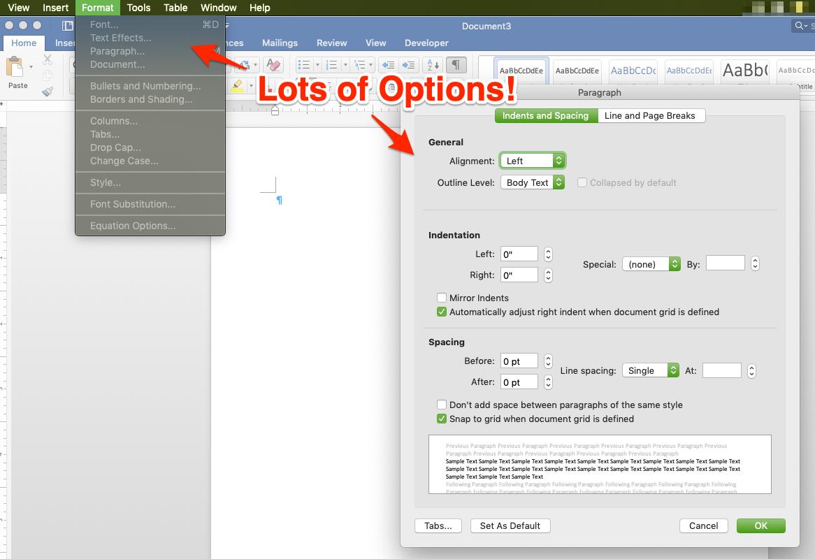 Word Format Options panel