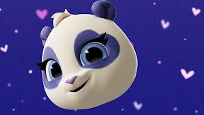 Precious the Panda thumbnail