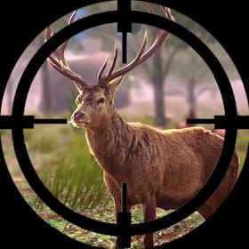 Deer Hunting Sniper Shooting