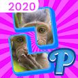 Pieces icon