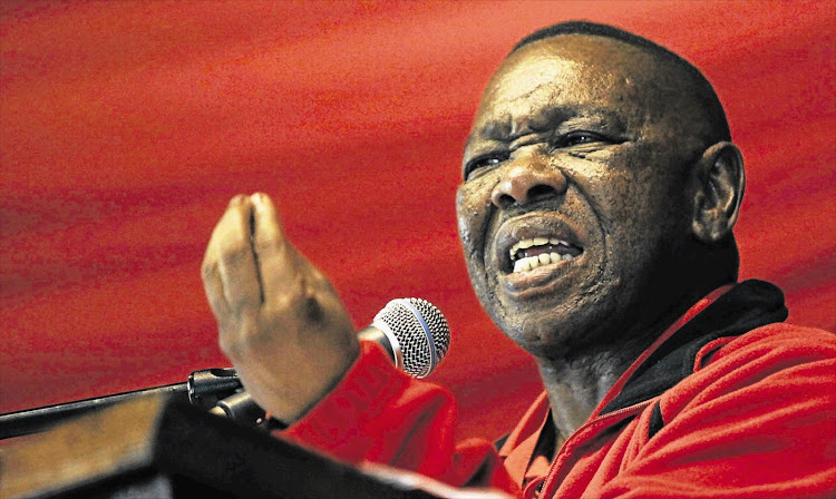 SACP general secretary Blade Nzimande says South Africa was on the verge of being turned into a mafia state