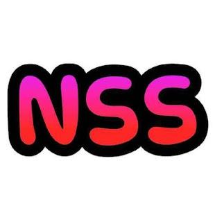 NetSkinShoes - náhled