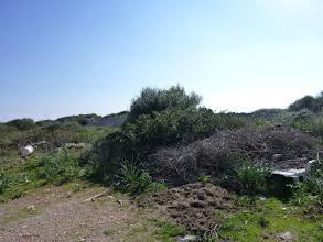 Photo: Deixalles diverses mesclades amb restes de jardineria