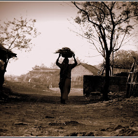 A Village Lady by Sourabh Mohanty - People Portraits of Women ( sony, sepia, village, india, morning )
