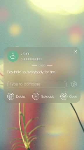 GO SMS PRO BEAUTY FLOWER THEME|玩個人化App免費|玩APPs