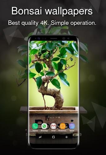 Download Bonsai Wallpapers 4k Apk Latest Version App By