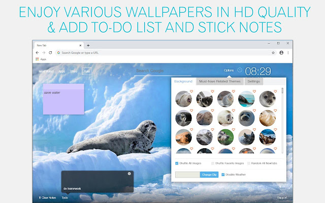 Seal Wallpaper Seals New Tab