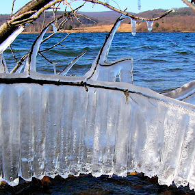 Musical Icicles by Carol Milne - Landscapes Weather