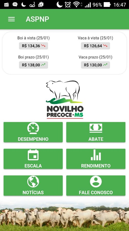 Novilho Precoce MS (Unreleased)- screenshot