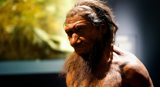 Neanderthal - Paul Hudson Flickr