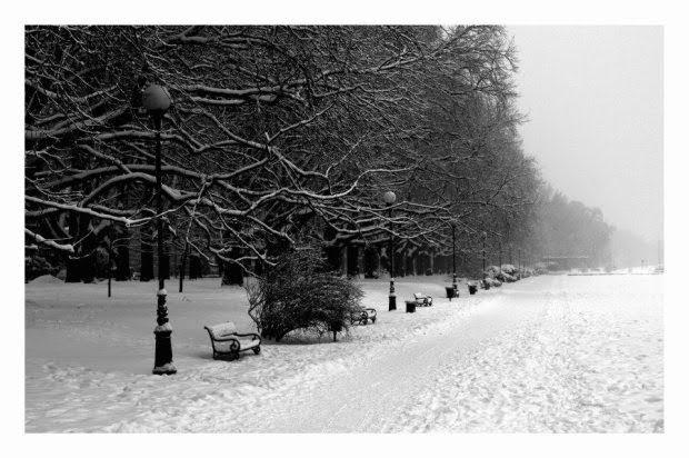 Śniegi Jasne błonia Szczecin