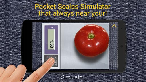 口袋里的尺度模拟2