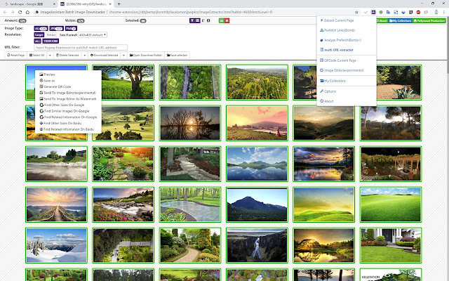 ImageAssistant Batch Image Downloader