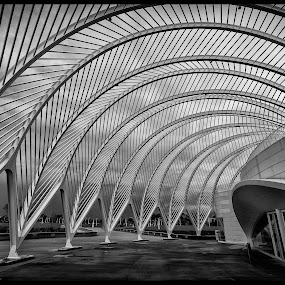 Poly One by Ken Wagner - Buildings & Architecture Architectural Detail ( black n white, structure, patterns, buildings, florida nikon )