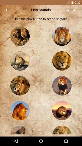 獅子聲音和鈴聲