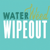 Waterweed Wipeout