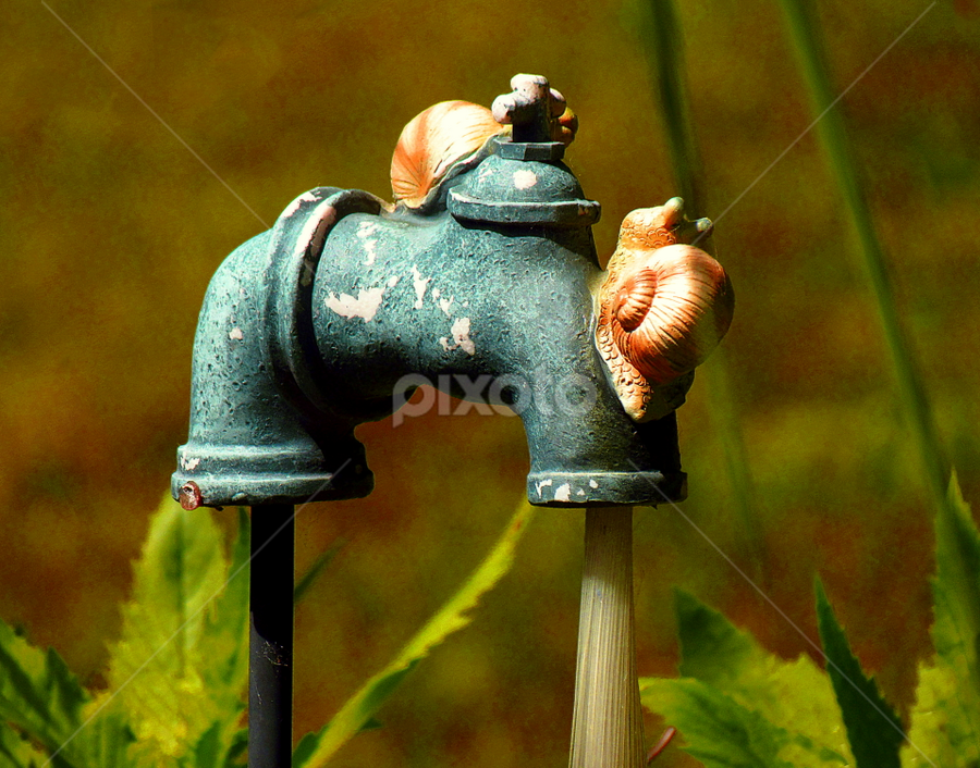 Garden Decoration by Tina Dare - Artistic Objects Still Life ( snail, faucet, nature, artistic, solar, garden, artistic object, decoration )