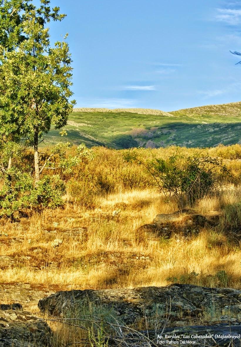 Photo: El paisaje es espectacular