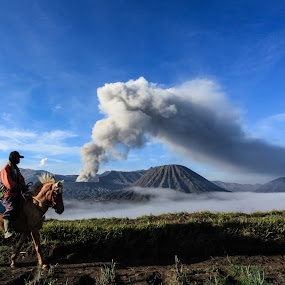 bromo and the horseman by Andrie Fery - Landscapes Mountains & Hills ( horses, horseman, horse, landscape photography, landscapes, landscape, bromo,  )