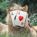 Scared WorldLionDay Solitaire icon