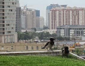 Photo: Bakussa rakennetaan paljon