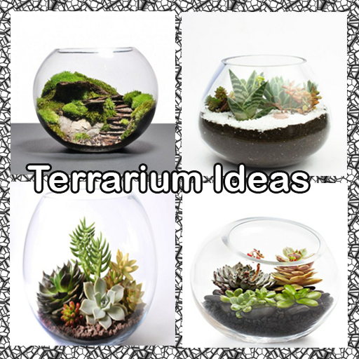 Terrarium Ideas 1.1 screenshots 1