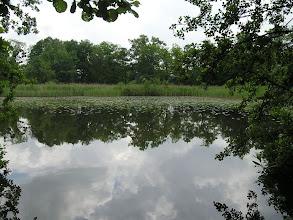 Photo: C6120039 rezerwat Łężczok - pocysterskie stawy