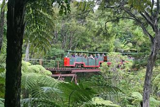 Photo: Schmalspurbahn bei Coromandel