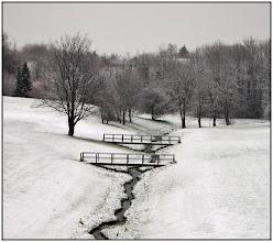 Photo: 19. november 2010 - Den første sne