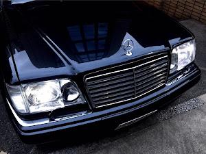 Eクラス ステーションワゴン W124 '95 E320T LTDのカスタム事例画像 oti124さんの2019年06月16日22:32の投稿
