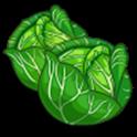 Irish Cabbage Lite icon