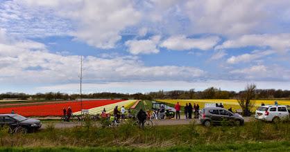 Photo: towards Leiden, again near Lisse