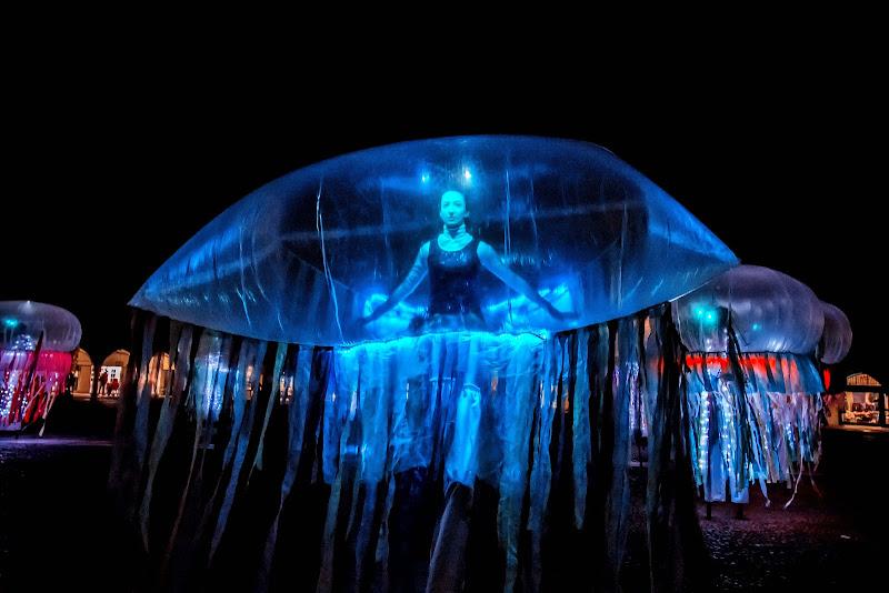Medusa blu di GazzolaFrancesco