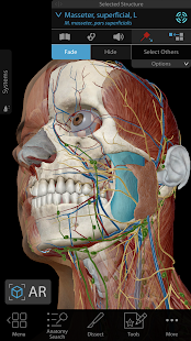 Human Anatomy Atlas 2019: Complete 3D Human Body Screenshot