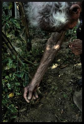 94 anni con le mani nella Terra.... di ChristianGiulianetti