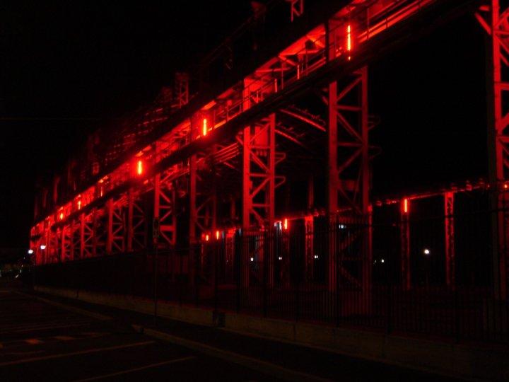 RED PATH di shyny