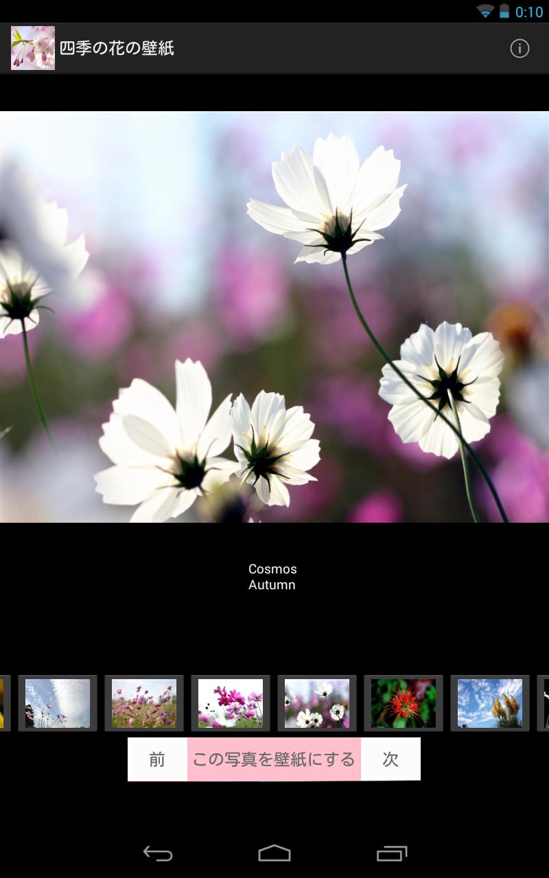 Скриншот Japanese Flowers HD Wallpapers