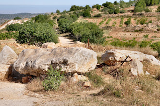 Photo: THe entrance to the farm is blocked by big rocks which were put there by the Israeli army. So we continue on foot . . .