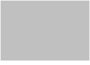 Logo for Plantation Pineapple Dark Rum