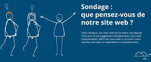 sondage site web L'Arche