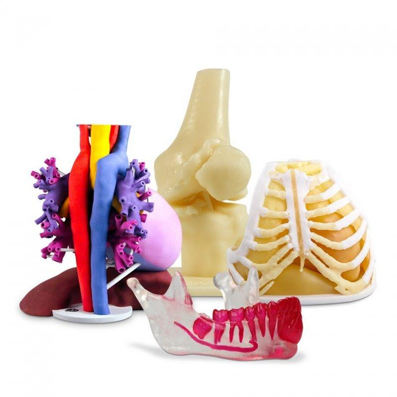 Для 3D-печати анатомической модели вам нужно сначала загрузить файл 3D-модели (будь то STL, OBJ или PLY) на сайт 3D Systems.