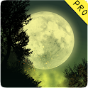Fantasy Night Forest  Live WP icon
