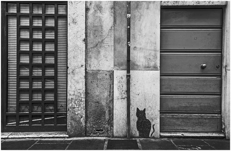 Appuntamento ...alla porta del gatto di Pietro Forti