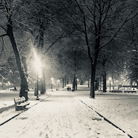 Snow by Bronagh Marnie - Instagram & Mobile iPhone (  )