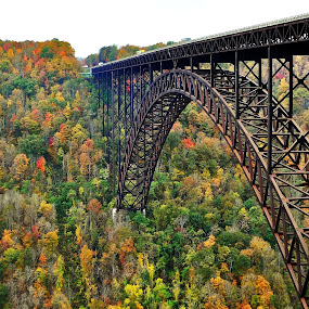 New River Gorge Bridge, WV by Mike Roth - Buildings & Architecture Bridges & Suspended Structures (  )
