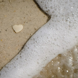 Heart in the Sand by Beth Thomander - Nature Up Close Sand ( sand, shell, waves, ocean, beach,  )
