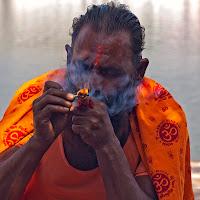 नमस्ते ऑरेंज (Namasté Arancione) di