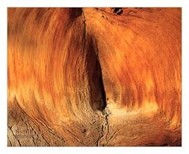 Photo: Eastern Sierras-20120715-293