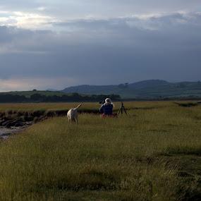 Beach landscape by Nick Hogg - Landscapes Beaches ( beach, photographer, clouds, dog, women )