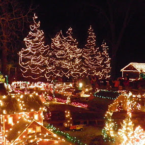 the grounds of Clifton Mill by Anne Mangen - Public Holidays Christmas ( pwcholidays,  )